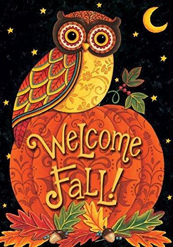 Fall Welcome Owl Perched On Pumpkin 12 X 18 Inch Garden Flag Custom D&eacutecor