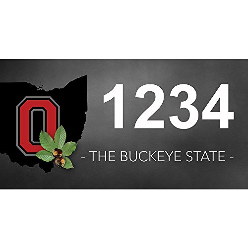 Ohio Buckeye - Custom House Numbers by State of Address  - 12 x 6 Metal