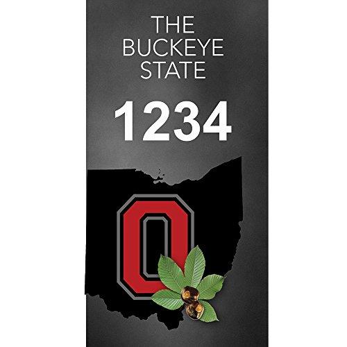 Ohio Buckeye - Custom House Numbers by State of Address  - 35 x 7 Metal