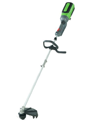 EcoPro Tools TM-DX101A Professional Cordless Electric Straight Shaft String Trimmer 40-volt