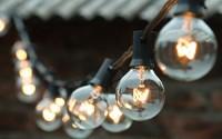 Iarr-G40-Clear-Globe-String-Lights-Set-Of-25-G40-Bulbs-Indoor-Outdoor-Ul-Listed-blake-10.jpg