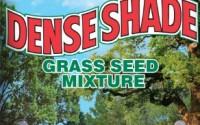 Jonathan-Green-10622-Dense-Shade-Grass-Seed-Mix-1-Pounds1.jpg