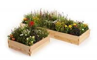Naturalyards-Raised-Garden-Bed-16-in-1-Kit-cedar-3-Boards-3.jpg