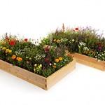 Naturalyards-Raised-Garden-Bed-16-in-1-Kit-rustic-Cedar-4-Boards-5.jpg