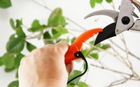 Q-yard-Handheld-Multi-Sharpener-for-Pruning-Shears-Garden-Hand-Pruners-Gardening-Scissors-38.jpg