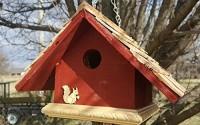 Garden-Wren-Bird-House-Lavender-38.jpg