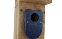Jcs-Wildlife-Cedar-Standard-Bluebird-House-W-Blue-Poly-Birdhouse-Predator-Guard6.jpg