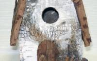 Birch-Barn-Bird-House-21.jpg