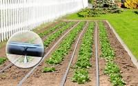 BioPlus-Garden-Drip-Tape-Irrigation-Kit-2000-19.jpg