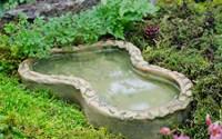 Fairy-Garden-Pond-50.jpg