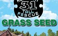 Jonathan-Green-Kentucky-Tall-Fescue-Grass-Seed-25-pound1.jpg