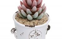 French-Country-Rustic-White-Ceramic-Succulent-Planter-Flower-Pot-Decorative-Accessory-Jar-Mygift-reg-22.jpg